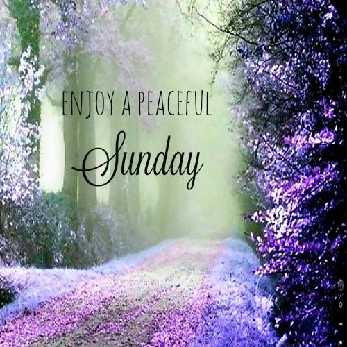 #sunday #love #sundayfunday #weekend #instagood #sundayvibes #photography #happy #instagram #photooftheday #nature #summer #picoftheday #like #follow #surge #surgeenegies #surgesolar #solar #solarpower #solarpvsystem