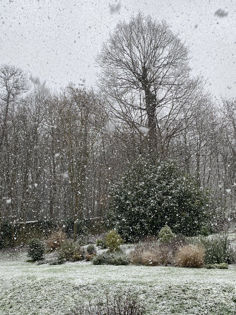 Bonheur! La neige tombe dans le jardin en ce dimanche midi! Je vous embrasse