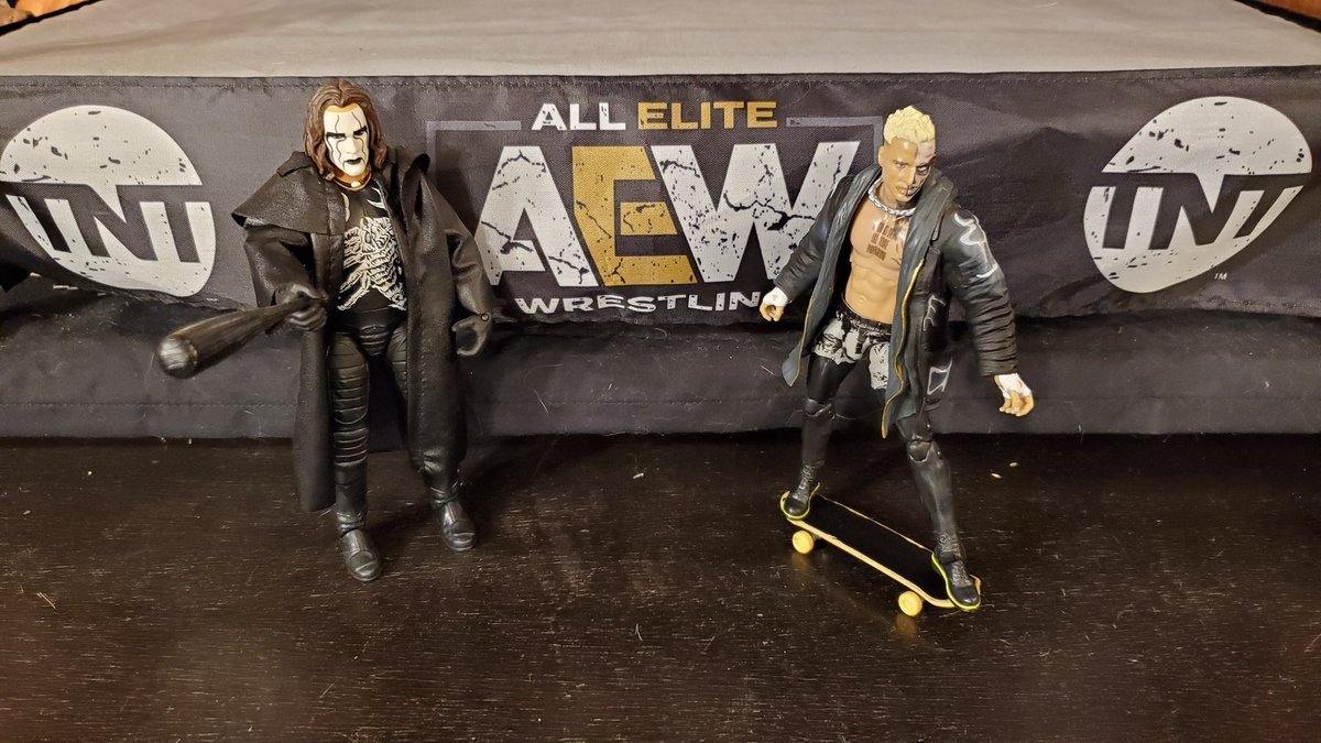 Sting and Darby Allin are All Elite! #AEW #wrestling #actionfigures #toys #sting #darbyallin #tnt #theicon #elite #skateboard #bigsteviepump #talesfromcollectorsparadise #BSPN #Bigsteviepumpguarantee #collecting #jazwares #mattel #ringsidecollectibles #rememorabiliacollectibles