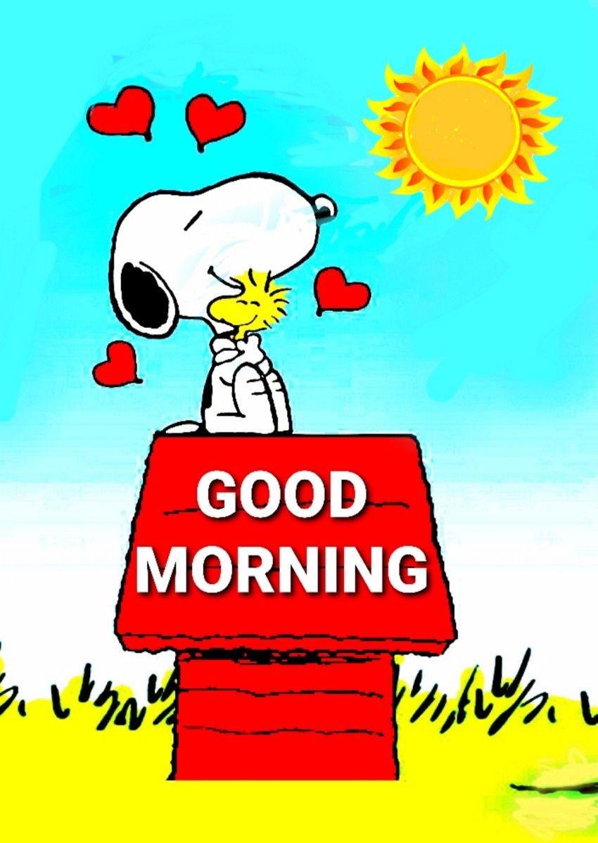 Good morning and Happy Sunday!🤗☕️❤️☀️ #SundayMorning