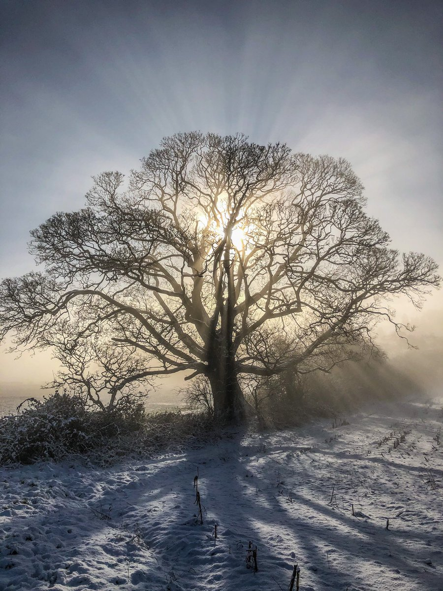 I do love a walk on a #snowday ! ⛄️ #snow #sundayvibes #Machen