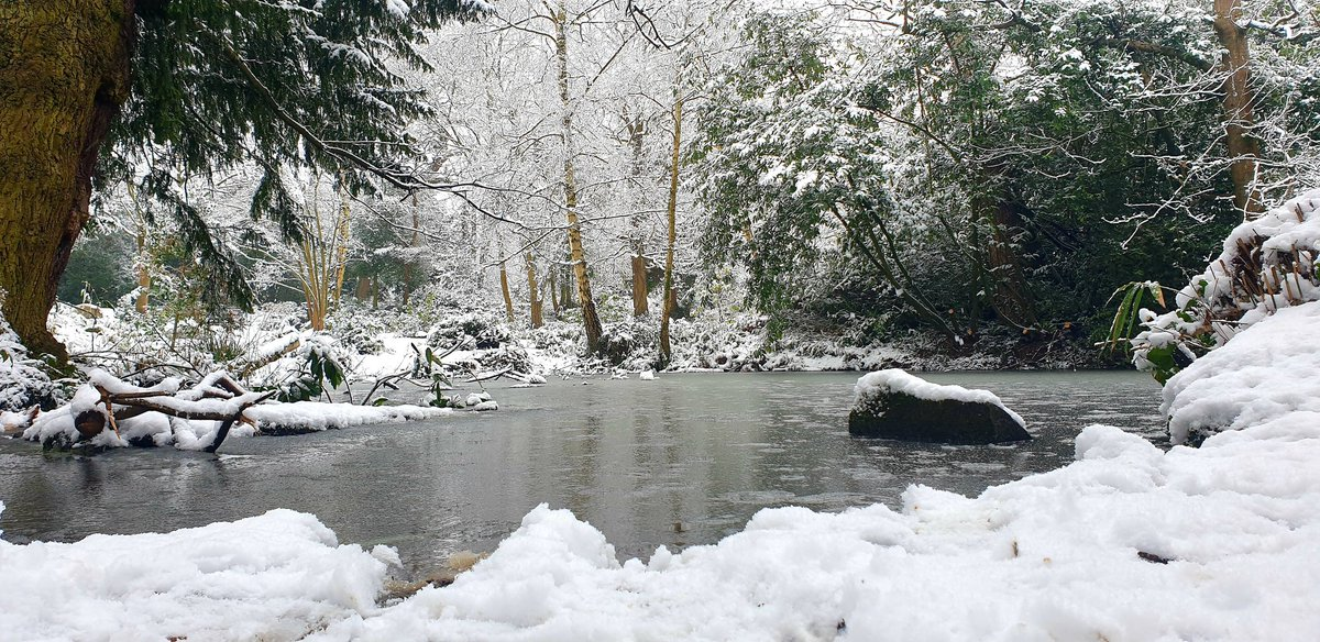 Everythings pretty in the snow  #snow #landscape #pond #nature #cold #outside #still #photography