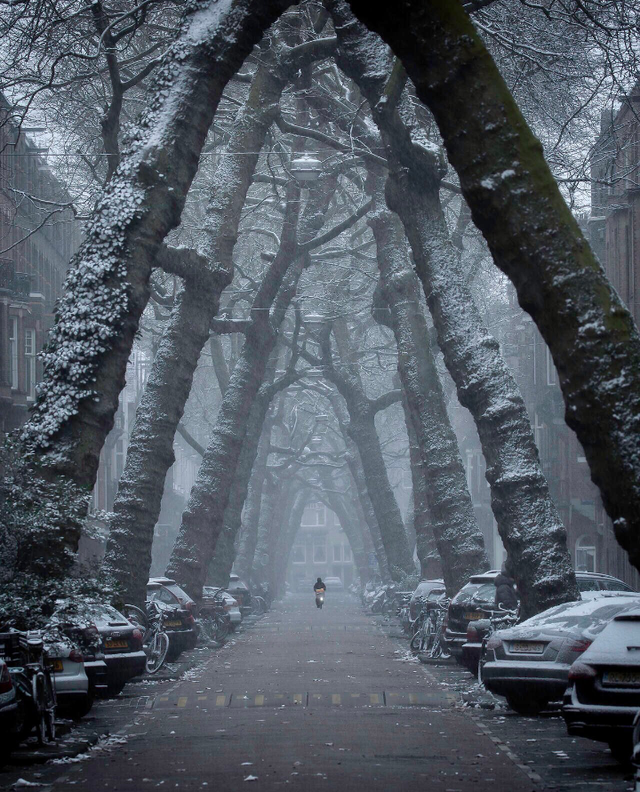 Winter in Loman street, Amsterdam. #nature #naturelovers #wonderful #beautiful #naturephotography #natureperfection #photooftheday #photograpy #beautiful #world #naturelove #cute #sweet #Travel
