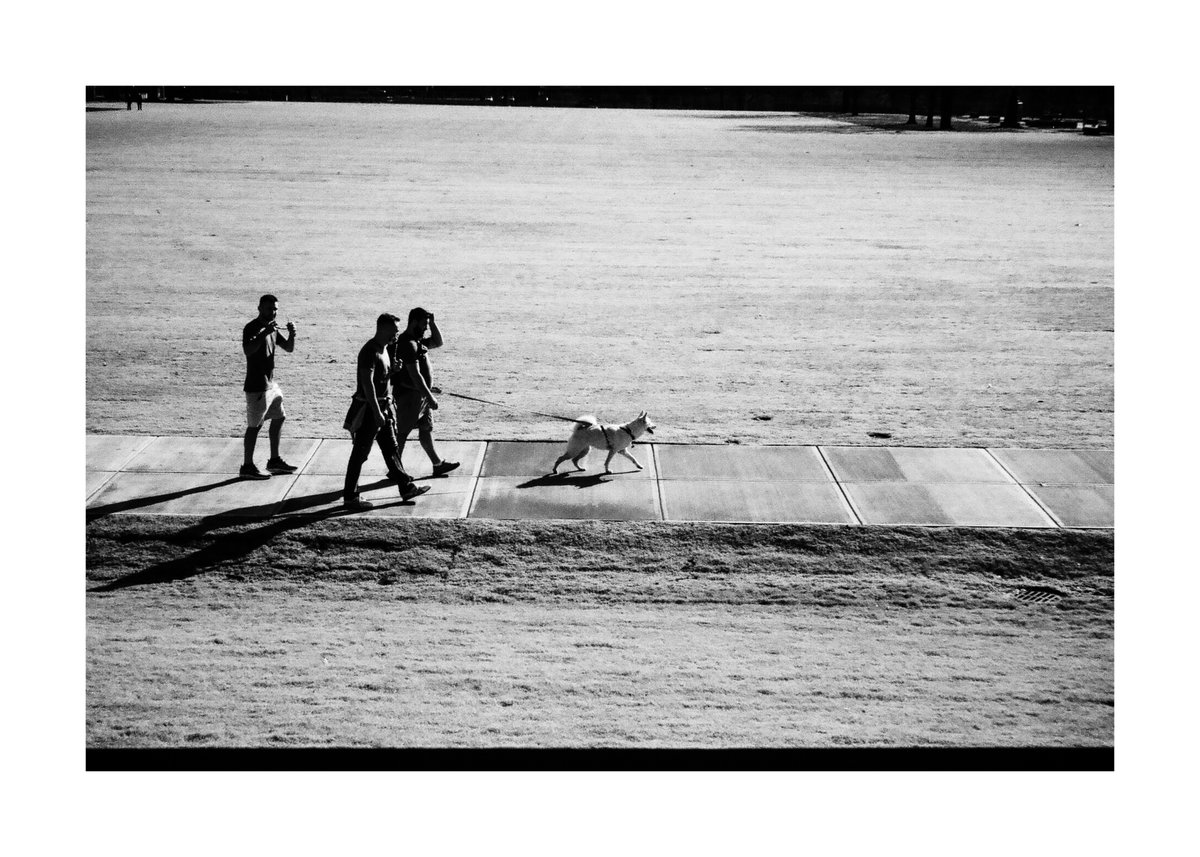 Dog walking humans.  #photooftheday #streetphotography #blackandwhitephotography #Dog #dogsoftwitter