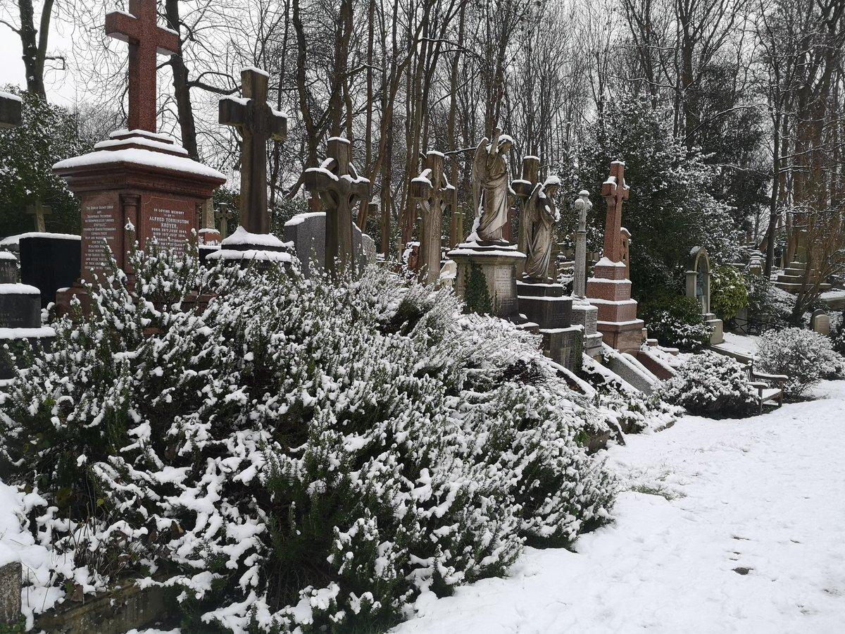 Cemetery walks #2 @HighgateCemeter  #outdoor #london #cemetry #spooky #ghosts #highgate #walks #winterwalks #winter #snow #sundayvibes #sundaymorning #SethRoganLovesTedCruz #dj #Sunday