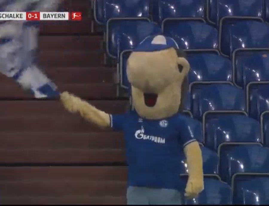 Replying to @TrollFootball: Life of a Schalke fan