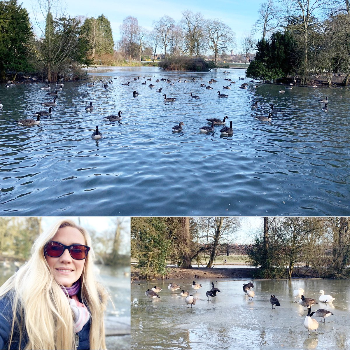 #DryJanuary day 24: #naturebaby 💚 Being outdoors is so important for our #mentalhealth & #wellbeing 🌳 Today I enjoyed a beautiful walk - watching the ducks 🦆& swans was so peaceful 💚 How was your day?☕️ 🫖 #greatoutdoors #lovewalking #lovenature @dryjanuary @AlcoholChangeUK