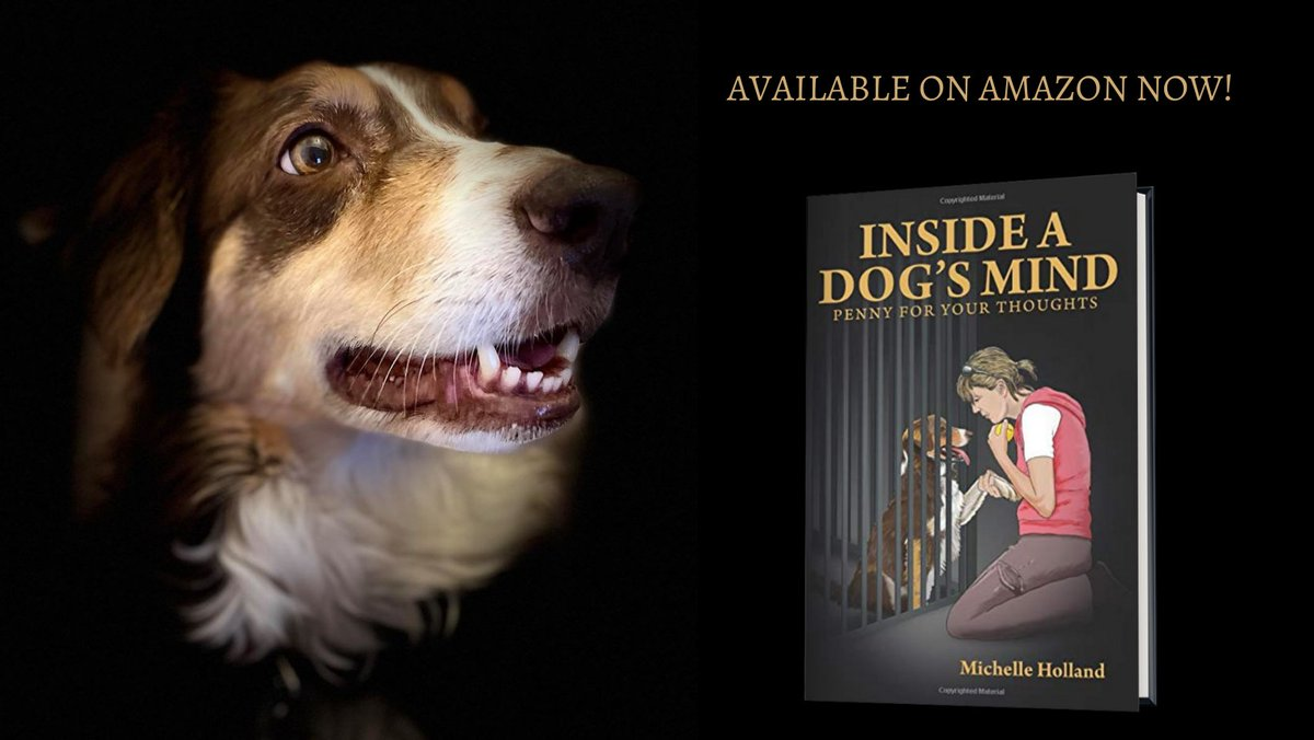 INSIDE A DOG'S MIND PENNY FOR YOUR THOUGHTS AVAILABLE ON AMAZON NOW #Kindle #dog #dogs #mustread #rescuedog #rescuedogs #doglover #youngadult #rescue #collie #amazon #Retweetplease #BooksOffice #smartreads #dogsofinstagram #adventure #dogwalking #Truestory