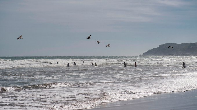 Chilean authorities spread false tsunami warning, apologize for causing panic Photo