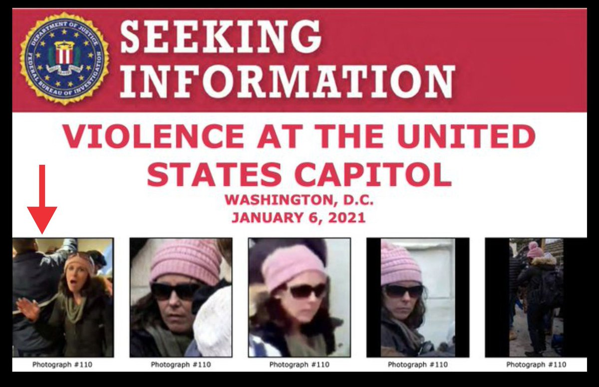 Who is #BullhornLady #PinkHatLady  She's on the FBI's Most Wanted but still hasn't been found. Who is she?