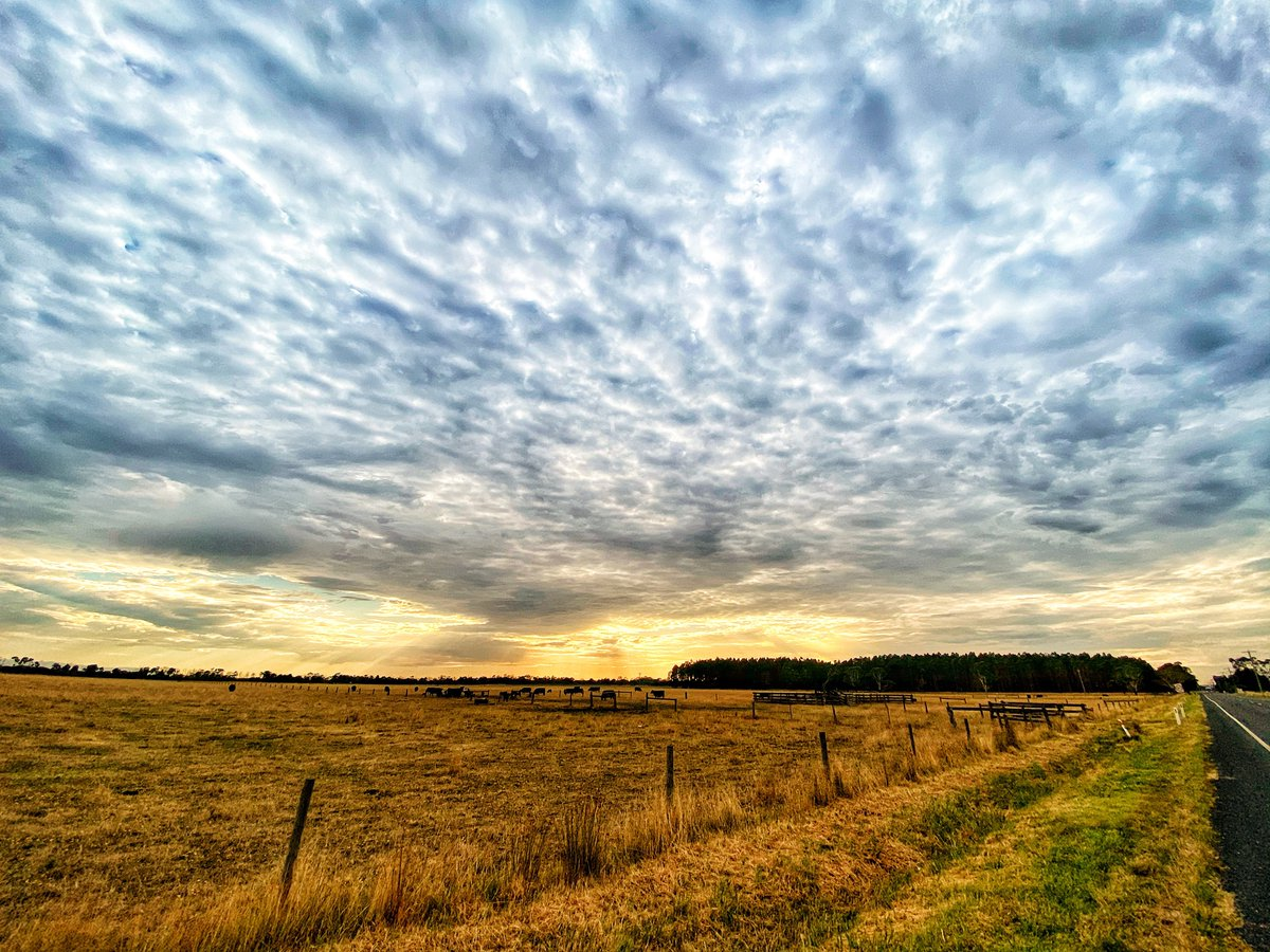 #morning #cloud  This morning in kooweerup, Victoria. The clouds are on their way.  @BOM_Vic