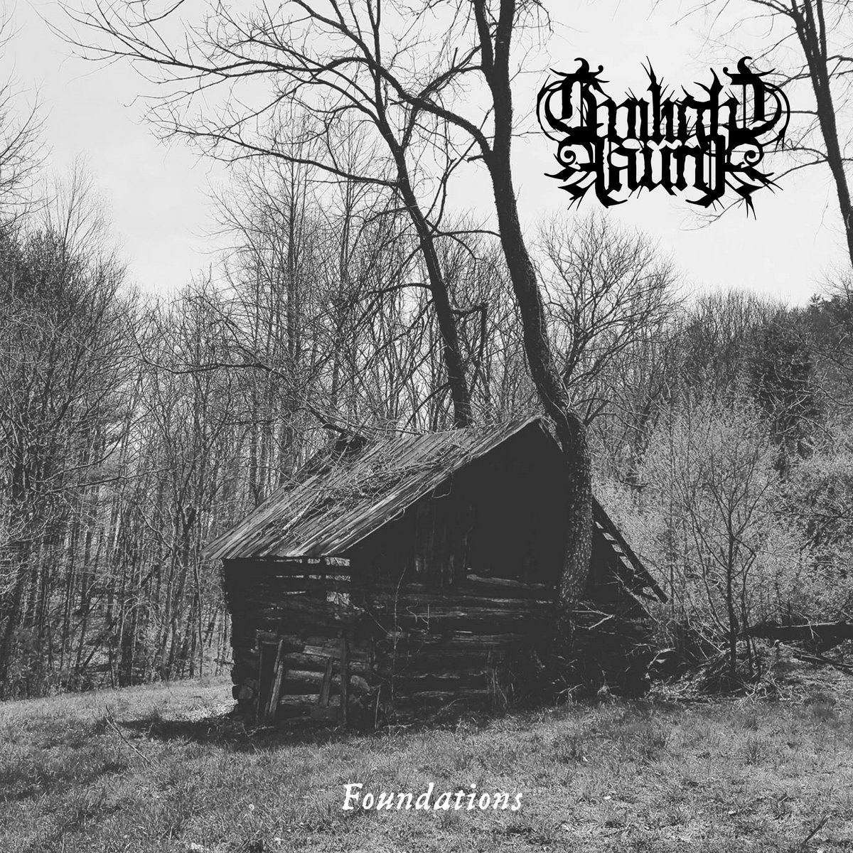 """Drum roll please. My number one #Underground and #Independent #HeavyMetal album of 2020 is: TWILIGHT FAUNA """"Foundations"""" on 12"""" vinyl LP! This Tennessee band mixes atmospheric #BlackMetal with elements of #NeoFolk and #TraditionalCountryMusic! Amazing! #BestOf2020 #MusicIsLife 🤘"""