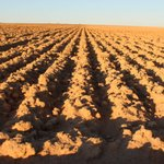 We are urging landholders to have their say on the draft National Soil Strategy. The Commonwealth Department of Agriculture, Water and Environment has commenced the second round of consultations on Australia's first ever overarching soil strategy. https://t.co/LGAem5N4m4