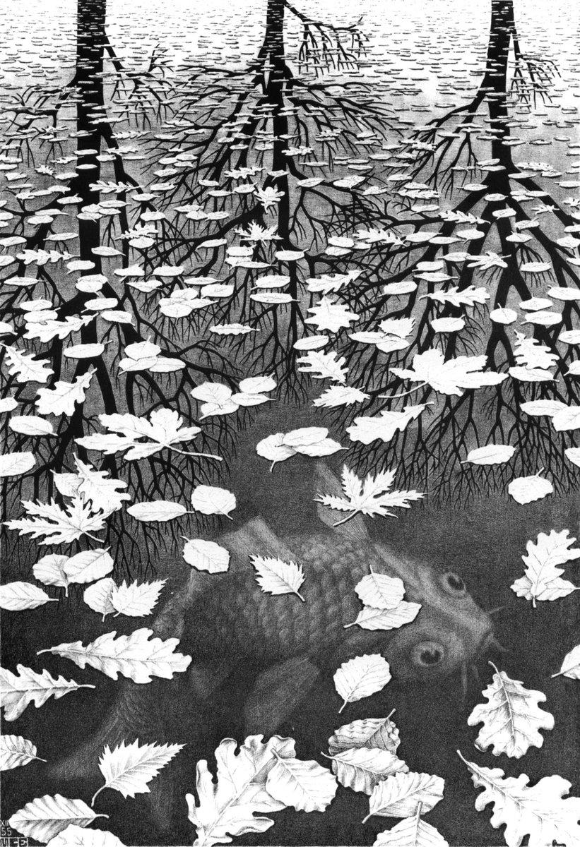 Three Worlds, 1955 #mcescher #opart