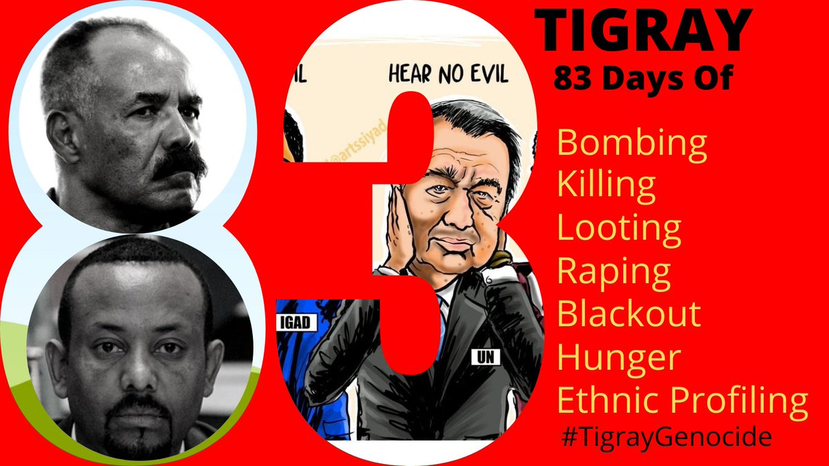 It's been 83 days in #Tigray Bombing, killing, looting, raping, blackout, hunger, ethnic cleansing.  We want a quick response from the world. #TigrayGenocide #StopWarOnTigray  #TigrayCantWait #EritreaOutOfTigray #BidenTakeAction #UNSCActNow  @JoeBiden @POTUS @VP @KamalaHarris