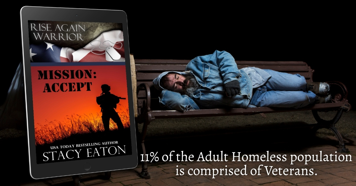 11% of the #Homeless population is comprised of #Veterans #RiseAgainWarrior looks at that. #Military #Warriors #PTSD #Recovery #Romance #Fiction #mgtab