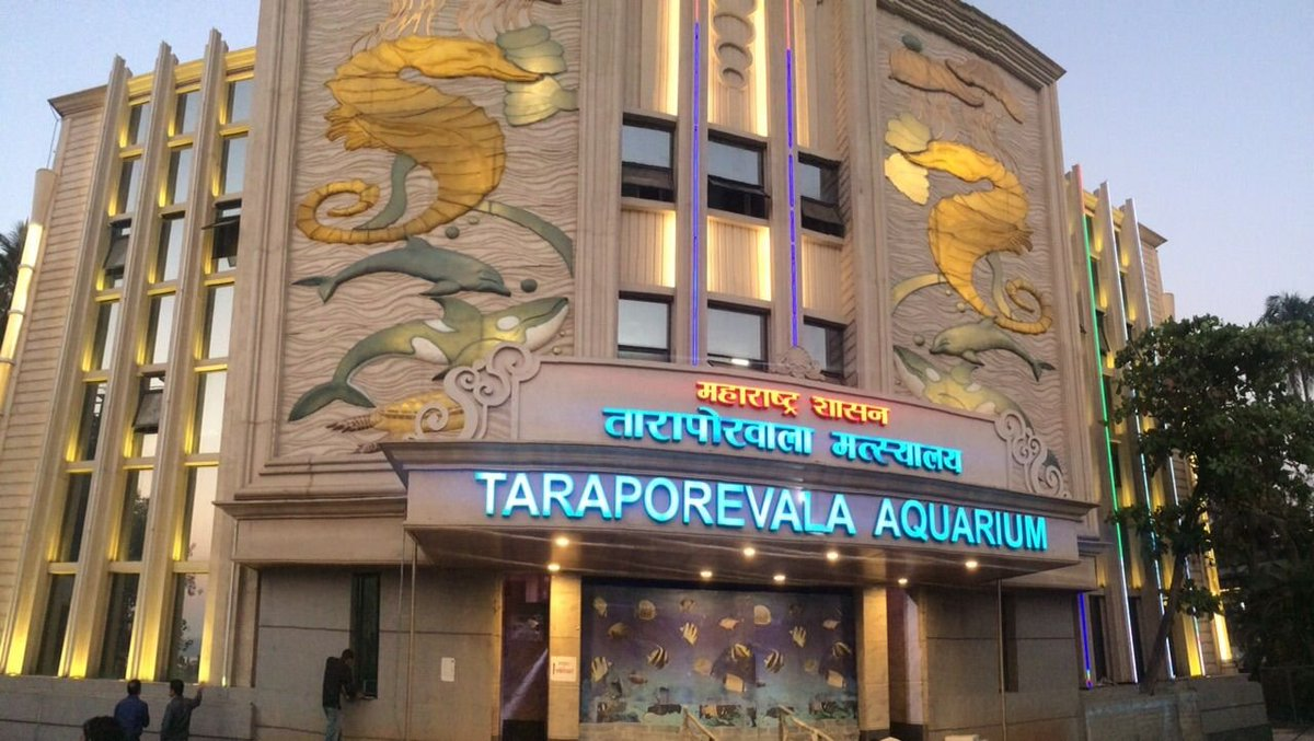 Taraporevala Aquarium is one of India's oldest aquariums and home to over 400 species of marine life.  Visited by marine enthusiasts, tourists and locals alike, this iconic aquarium is a #MumbaiMustVisit on everyone's itinerary list. @mybmc