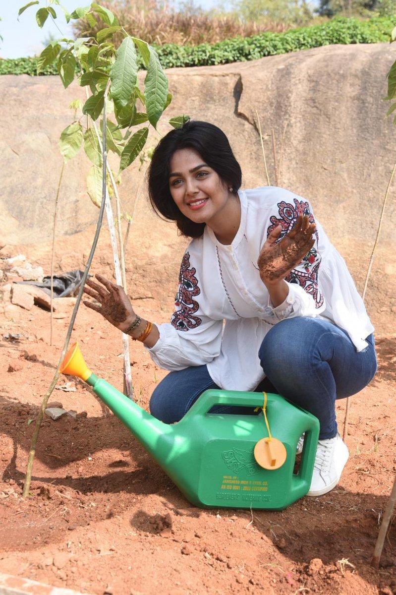 . @Gajjarmonal accepted #HaraHaiTohBharaHai #GreenindiaChallenge 💚🌱