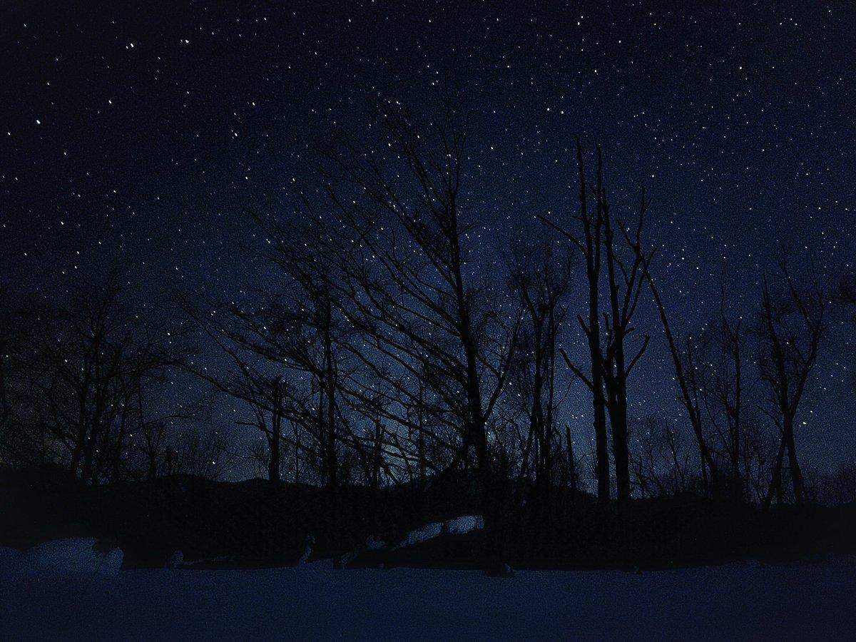 北海道、支笏湖・美笛の星空 iPhoneの普通のカメラアプリで撮りました。 Apple ProRAW iPhone 12 Pro Max  #shotONiPhone12proMax #AppleProRAW #shotoniphone #shikotsuko #支笏湖 #hokkaido   #underzero #cold #nature #winter #winterphotography #star #starphotography