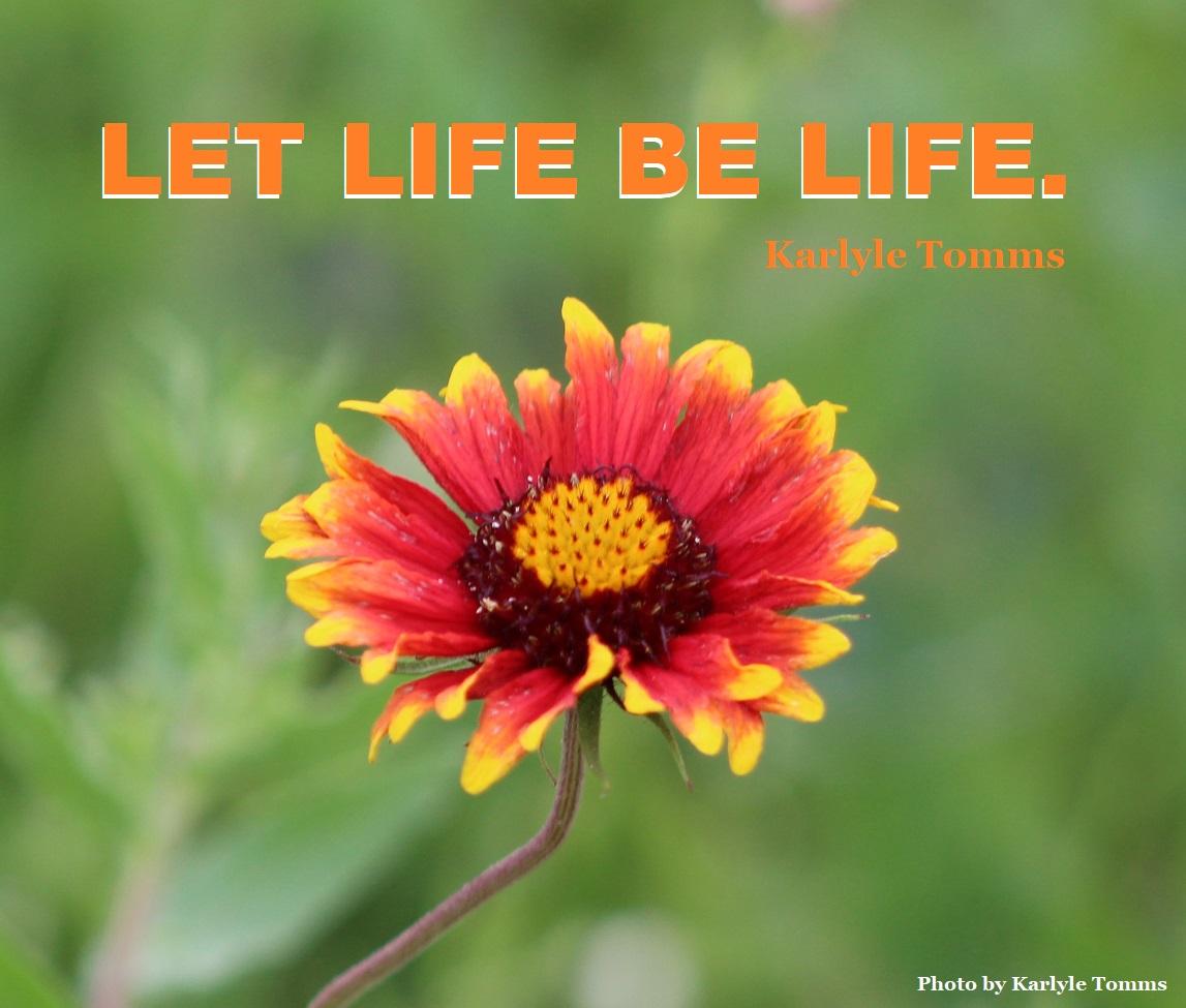 #life #lifelessons