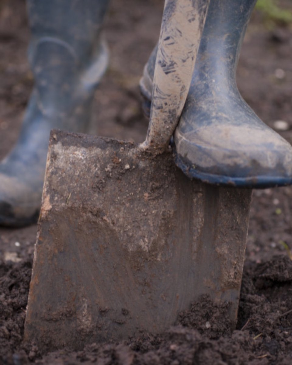 To dig or not to dig a new bed. That's the question and here are some answers from some leading garden experts in the UK. @TEGmagazine #gardening #soil.