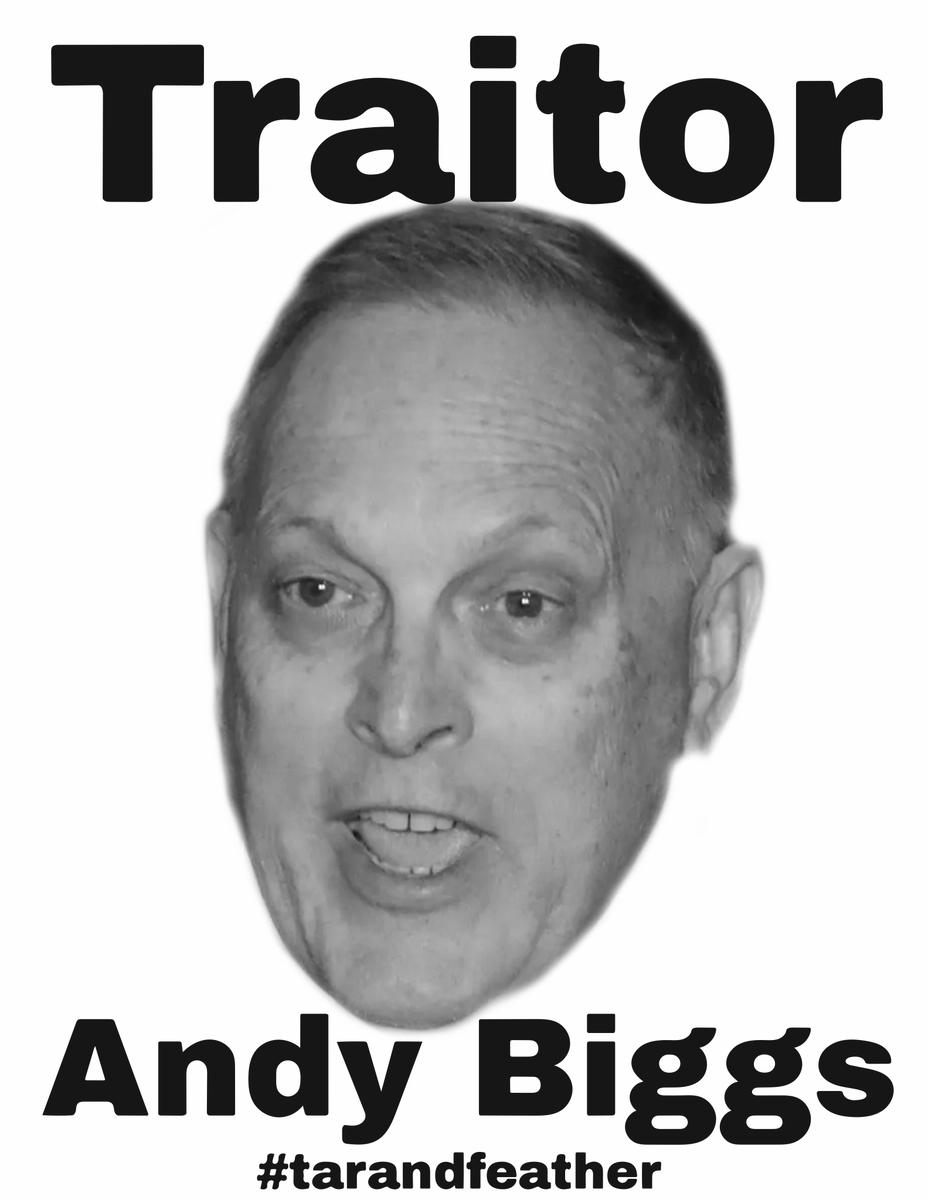 Andy Biggs is a traitor! RESIGN!   #tarandfeather #AndyBiggs  #AndyBiggsResign   #tarandfeather2021 #Traitors #TraitorCaucus #SeditionCaucus #AmericaOrTrump