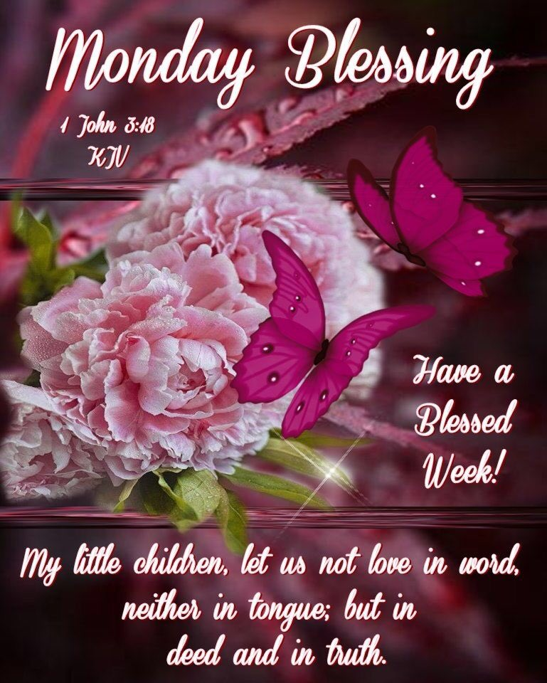 #goodmorning #Morning #MorningVibes #morningmotivation #Monday #mondayvibes #mondaymotivation #blessed #blessings #blessedbeyondmeasure