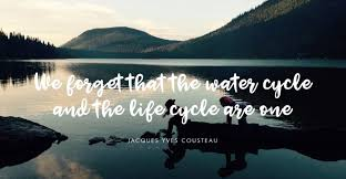 """We forget that the water cycle and the life cycle are one"" - Jacques Yves Cousteau #isavewaterbecause @Waterwise #MondayVibes"