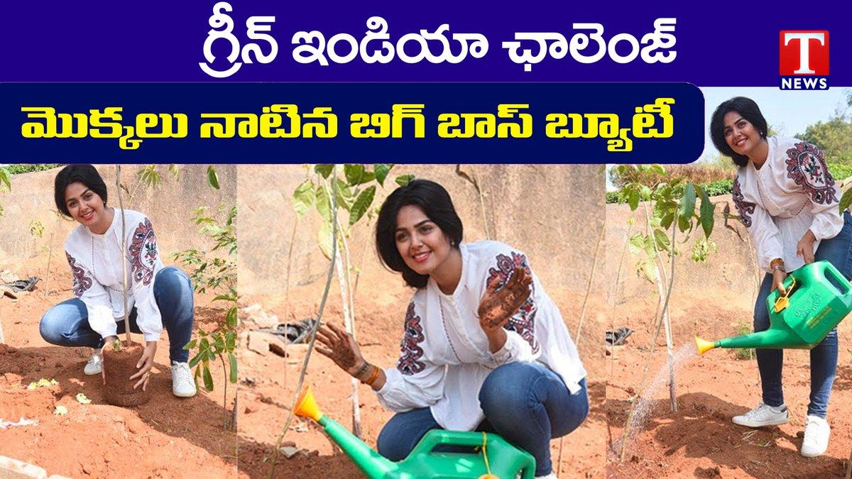 Bigg Boss Fame Monal Gajjar accepted Green India Challenge || మోనాల్ గ్రీన్ ఛాలెంజ్ || T News #MonalGajjar #GreenIndiaChallenge #Tnews >>>>