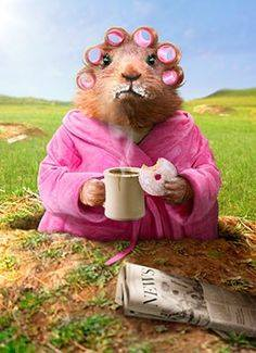 Good morning #TwitterWorld , it's #coffeetime again....  #MondayMorning