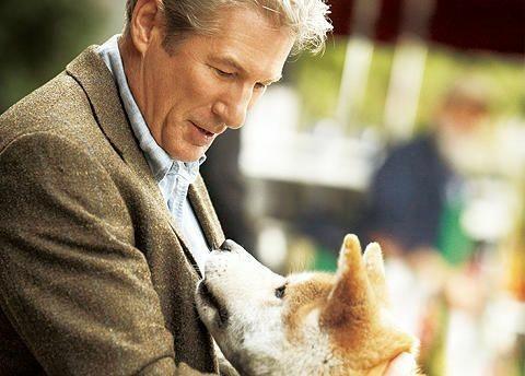 NetflixでHACHI(忠犬ハチ公)を見てしまった。初めてじゃないのに又泣いた😑💦 忠実な犬の愛に感謝。 ヨーロッパではこの映画で🇯🇵犬ブームがおきたと聞きました。実際イタリアでも何匹か見ました。 🇯🇵犬は気質も特別な気がします。  #Netflix  #日本犬