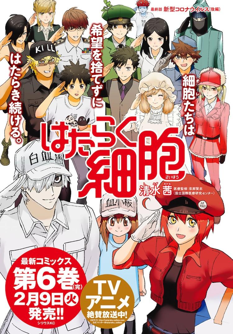 【TBQ NEWS】[Khi Tế Bào Làm Việc] chính thức kết thúc, tập cuối sẽ phát hành tại Nhật vào đầu tháng 2!