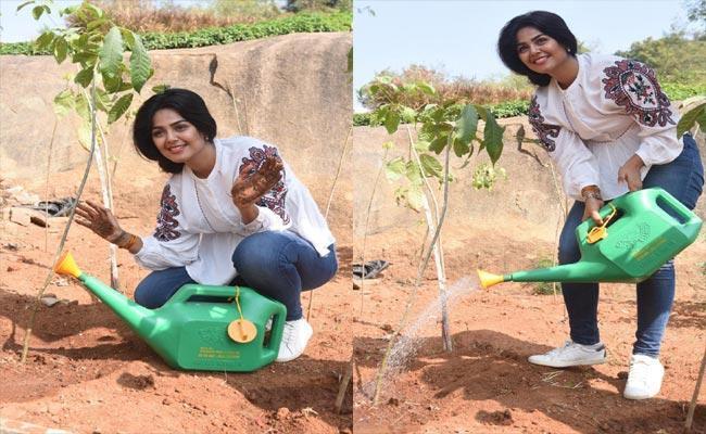 ఛాలెంజ్ స్వీకరించిన మోనాల్.. మరో నలుగురికి!  #MonalGajjar #GreenIndiaChallenge