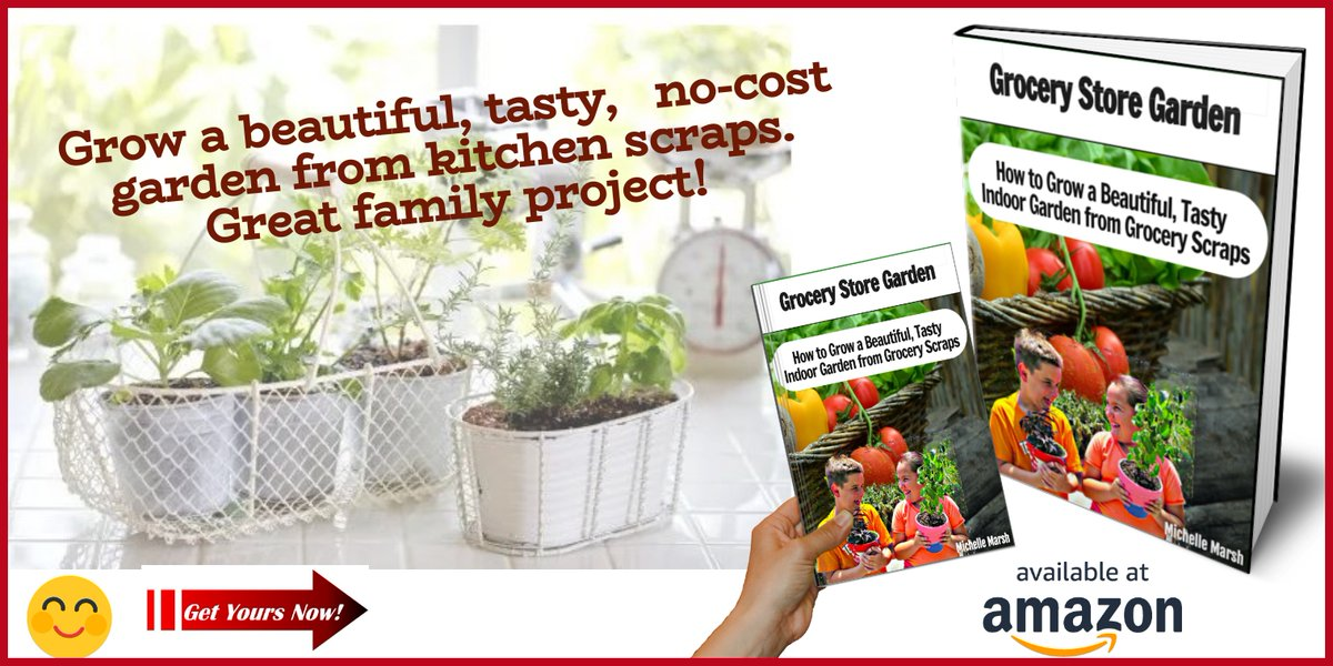 Garden from Kitchen Scraps #gardening #garden #gardenchat #plants #gardentips #UrbanGardening #plantchat #organicgarden #vegetablegarden #flowers #growyourown #homeandgarden #gardenlife #GardenersWorld #organic #Homegrown #mygarden #greenthumb #diy