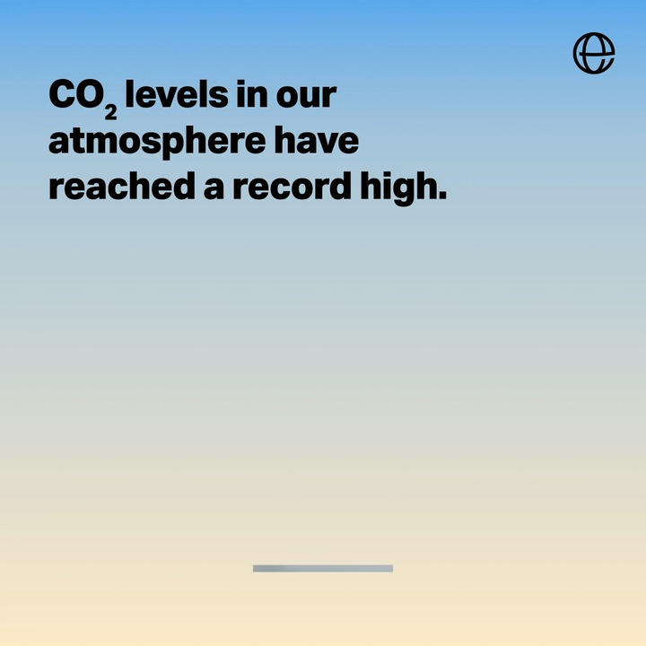 With levels of atmospheric CO2 from the burning of fossil fuels rising, the planet's natural carbon sinks have never been more vital. That's why we work tirelessly to protect forests and oceans, two of the biggest natural carbon sinks on the planet.