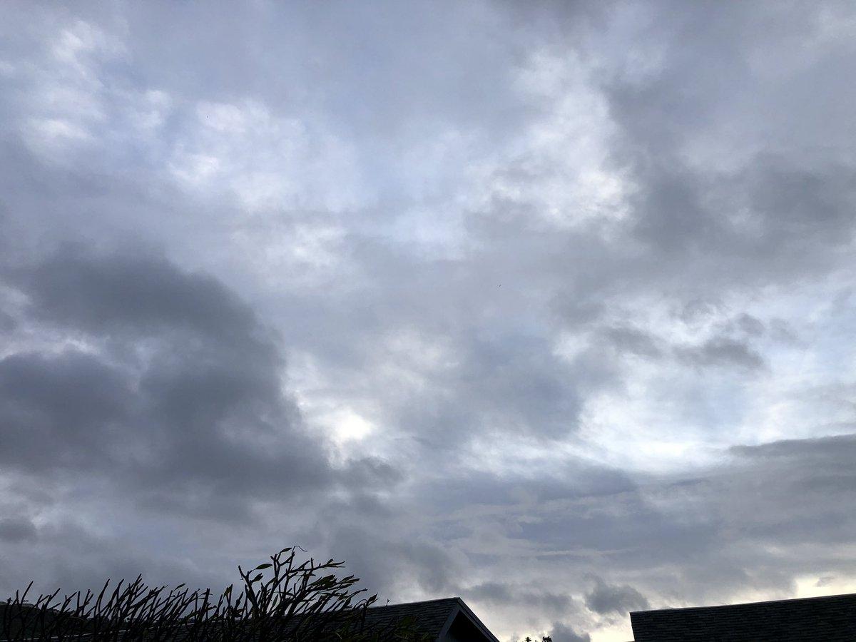 ハワおは! 1/25/2021 今日はどんよりの朝。予報もズバリ曇りだって☁️ #イマソラ #ハワイ暮らし #MondayMorning