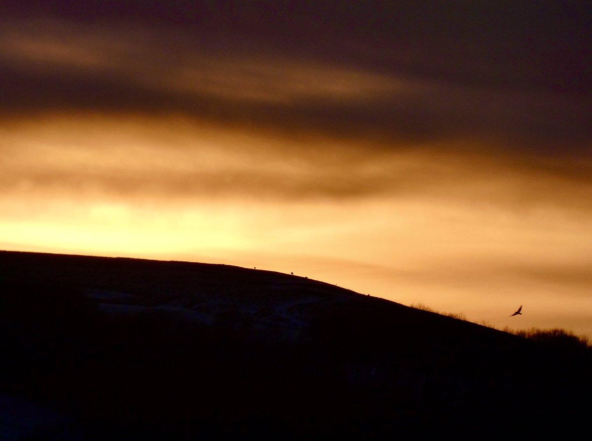 Last of the #snow (for now) & tonight's #sunset @StormHour @bbcweather @BBCSouthWeather #stormhour #oxfordshire #uffington #whitehorsehill #kingstonlisle #photography #BurnsNight #sky #walking #local #lockdown2021 #Mindfulness #getfit #StaySafe #MondayMotivation #PositiveVibes
