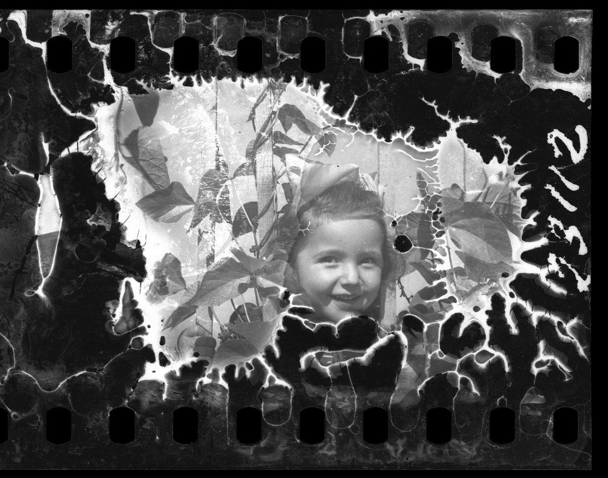 Il sito di riferimento per maggiori informazioni sulla storia del ghetto di #Lodz e sulla vita e le foto di #HenrykRoss lo trovate qui ⬇️    #GiornodellaMemoria  #GiornodellaMemoria2021