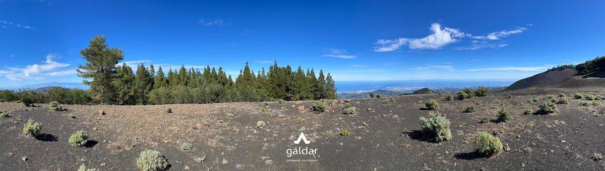 En días claros los Pinos de #Gáldar se convierten en una perfecta atalaya desde la que contemplar todo el Norte de Gran Canaria y además sentir la cercanía de otras islas. Al oeste, Tenerife con el padre Teide; al este Fuerteventura con los picos de Jandía.