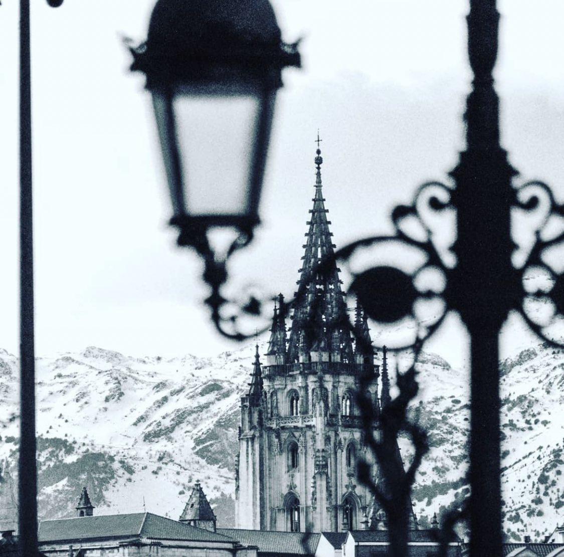 ¡Buenas noches @igers_oviedo! Preciosa imagen en blanco y negro desde #Oviedo 📸 foto de @esther.edelweiss✨📸 🌟💙💛✨ #igerstierrina #igers_oviedo #igersspain #igers #igersasturias #igersoviedo