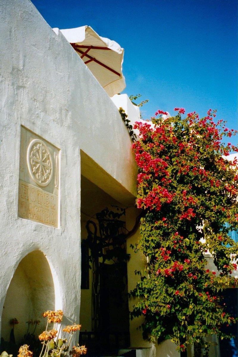 Φολέγανδρος, Χώρα #tbt #greece #greeksummer #greekislands #cyclades #folegandros #village #chora #plant #plants #bougainvillea