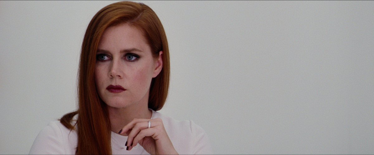 Amy Adams in NOCTURNAL ANIMALS. that's it that's the tweet