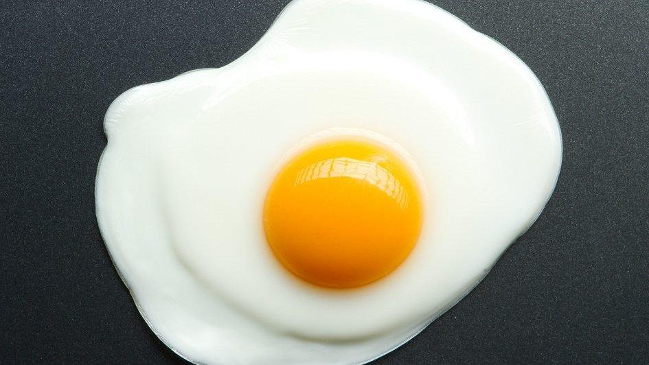 """Ovo aumenta """"colesterol bom"""", é nutritivo e pode ser consumido diariamente -->    #Saude"""