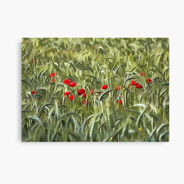 #CanvasPrint by #taiche  #CornPoppies In A #WheatField #Painting #poppyflower #poppy #nature #poppyfields #poppies #flower #poppyflowers #red #naturelovers #poppyfield #landscape #wildflowers #spring #redflowers #remembrance #neverforgetveterans