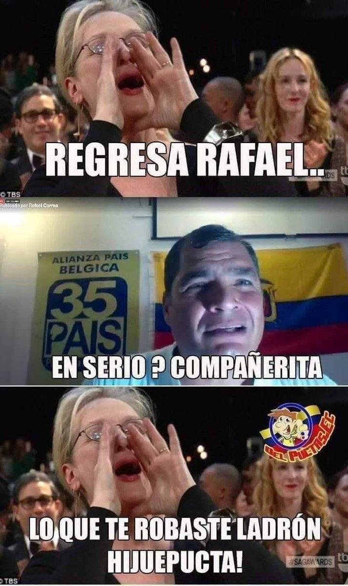 En serio #compañerito 🤣  #RafaelCorrea  #EleccionesEcuador2021  #memes2021  #Memes  #Arauz  #correa