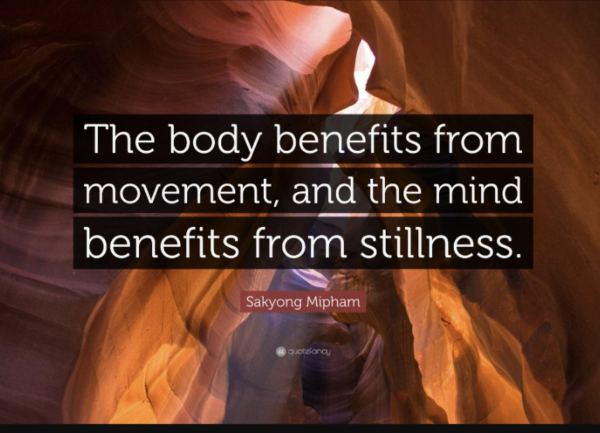 Penn State University reports that the mental health benefits of combining mindfulness with movement may be much stronger. Intentional movement helps people become more aware and helps them ease into mindful state.   Have you tried mindful walking?   #meditation #mindfulness