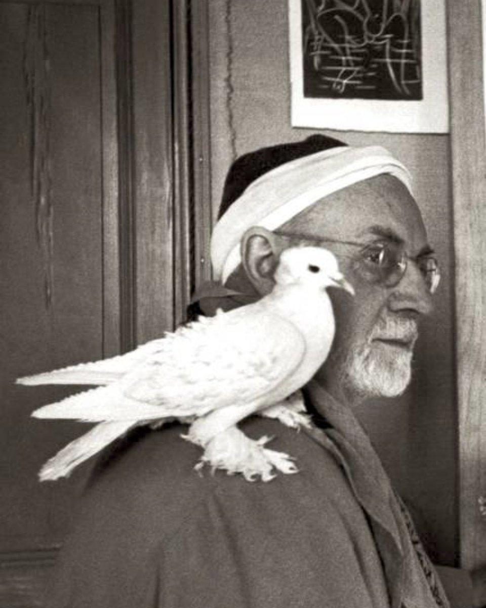 Série Oiseaux. Un autre perchoir de qualité ! Matisse #matisse #henrimatisse #oiseaux #colombe #artist #masterpiece #art #nice #modernart #maeght #yoyomaeght