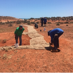 Sieve rolls and jute matting – a soft approach to land remediation and erosion control. Recent projects illustrate techniques used by pastoralists to remediate issues without need for heavy machinery & further risk to sensitive World Heritage areas @nationallandcareprogram