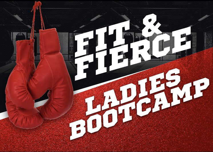 Fantastic work from the Ladies this morning! 😊👊🔥🥵  If you want a great workout that sets you up for your day ahead, get in touch today! ✅  #ladiesbootcamp #morning #startthedayright #boxingworkout #tuesday #thursday #zoomclass #personaltrainer #online
