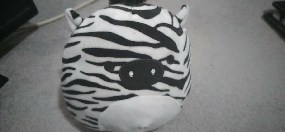 #bootwtselfieday not going to post a pic of me but heres my stuff plush!